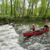 Splav po Dunaji – NP Donau Auen